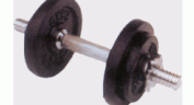 Dumbbells  ::  10kg Dumbbell Set