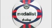 Netball Balls  ::  Destiny