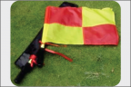Linesmans Flags