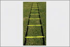 Training Aids  ::  Agility Ladder