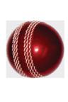 Practice Balls  ::  Softee