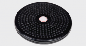 Exercise Equipment  ::  Twist Board